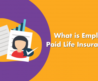 What Is Employer Paid Life Insurance